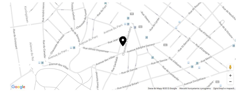 Stylizacja mapy Google