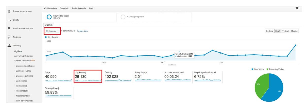 Użytkownicy Google Analytics
